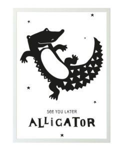 Πόστερ Αλιγάτορας